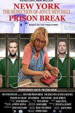 Watch New York Prison Break the Seduction of Joyce Mitchell Zmovies