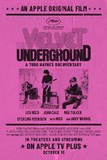 Watch The Velvet Underground Zmovies